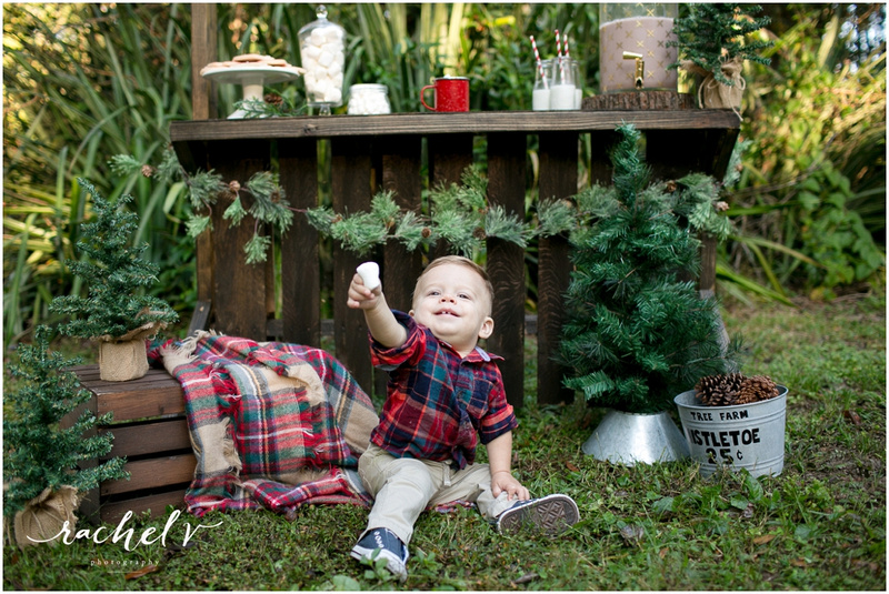 Marshmallow Mini holiday portraits with Rachel V Photography & Within the Grove in Maitland Florida