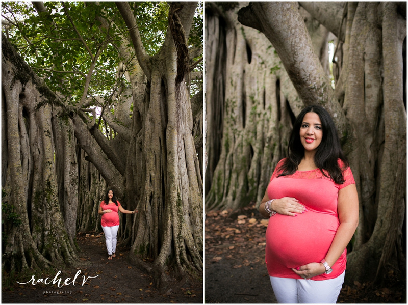Maternity session at Hugh Taylor Birch State Park in Ft. Lauderdale, FL with Rachel V Photography