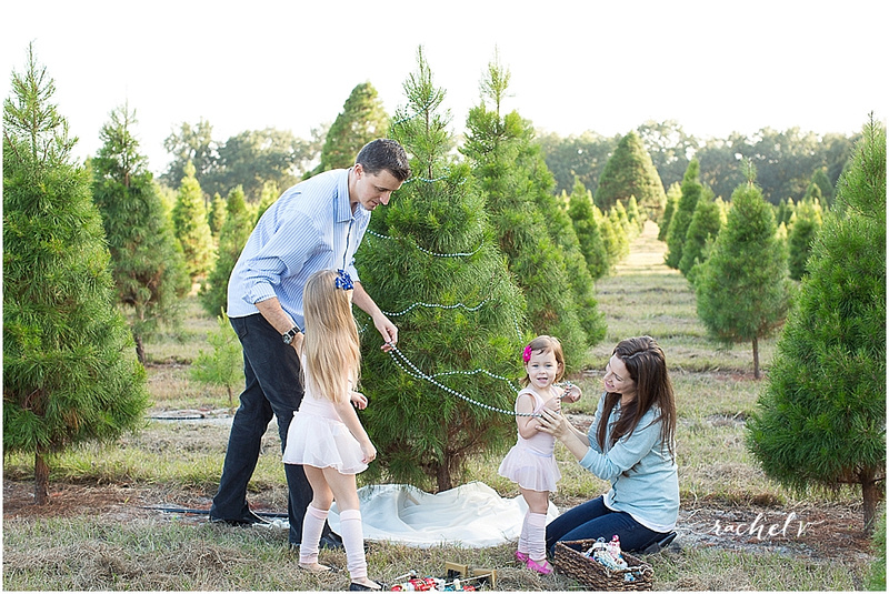 lifestyle holiday photo session at santas christmas tree farm in eustis florida with rachel v photography